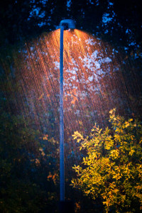 autumn-rain-elitere