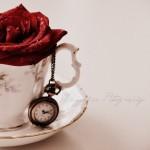 Romanţă fără ecou